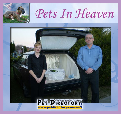 Pets In Heaven Vehicle